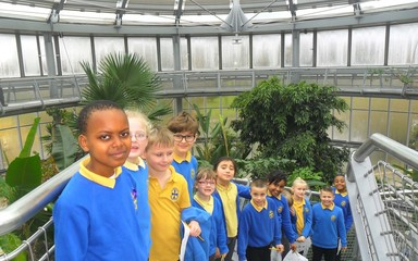 Exploring the Rainforest at Sunderland Winter Gardens