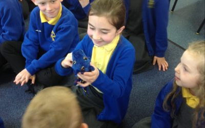 The egg in Y2 has hatched…..