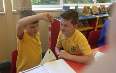 Year 5 Forces in Science