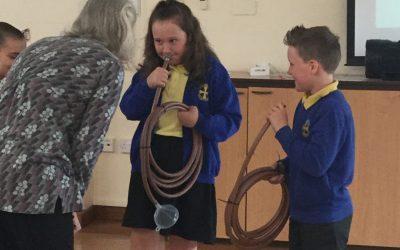 Trumpet Trials